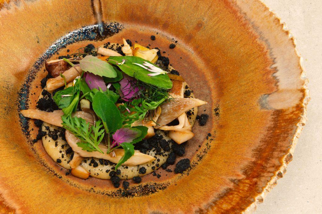 Sommerlicher Wald – Pilze – Kartoffel – Bärlauch
