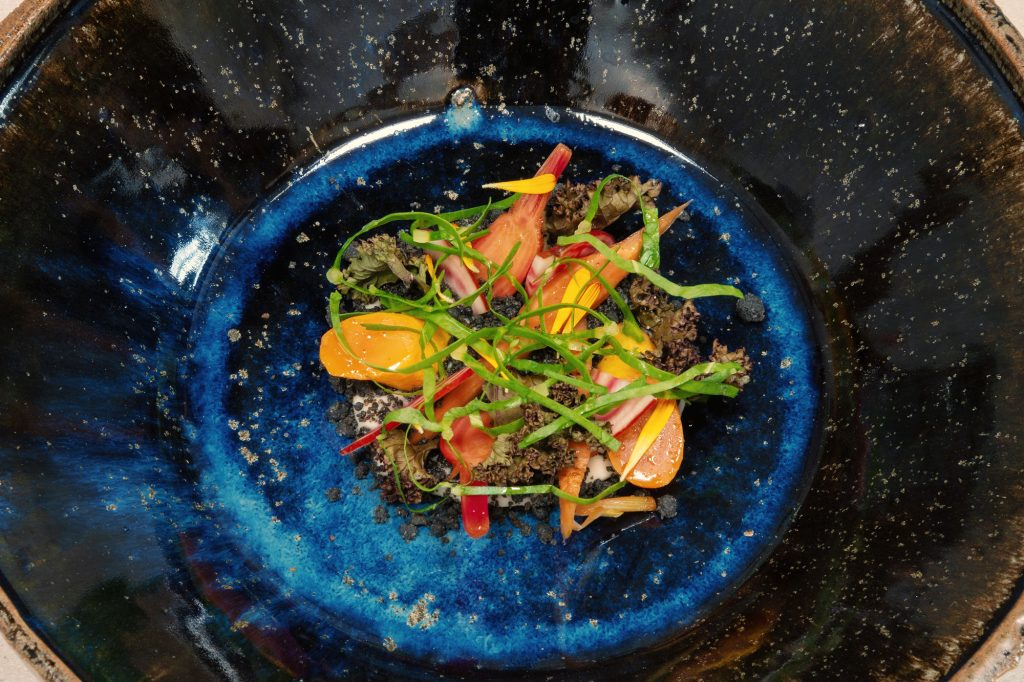Sommergarten - Beete - Karotte -Sellerie